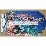 Spa-коврик д/ванны AQUA-PRIME 67х36см Черепаха 1/50